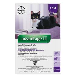 Advantage II large cat 6x0.8ml