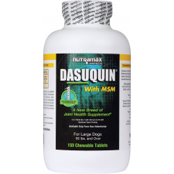 Dasuquin MSM (Canine - Large)