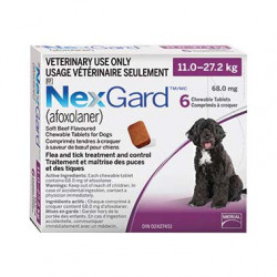 NexGard (11 - 27.2kg)